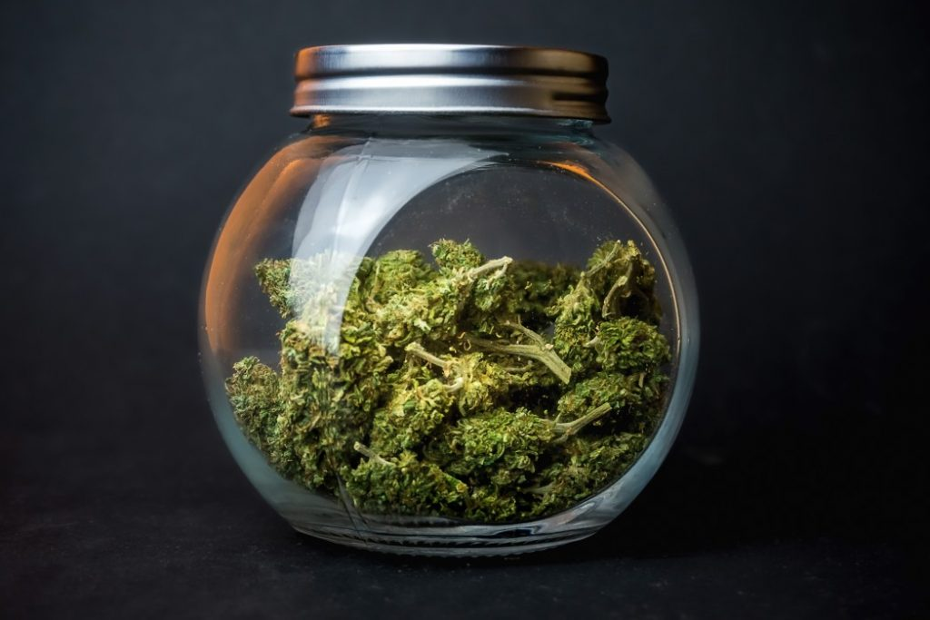 dry cannabis