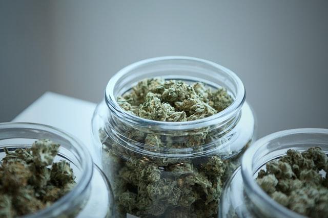 cannabis strain flowers